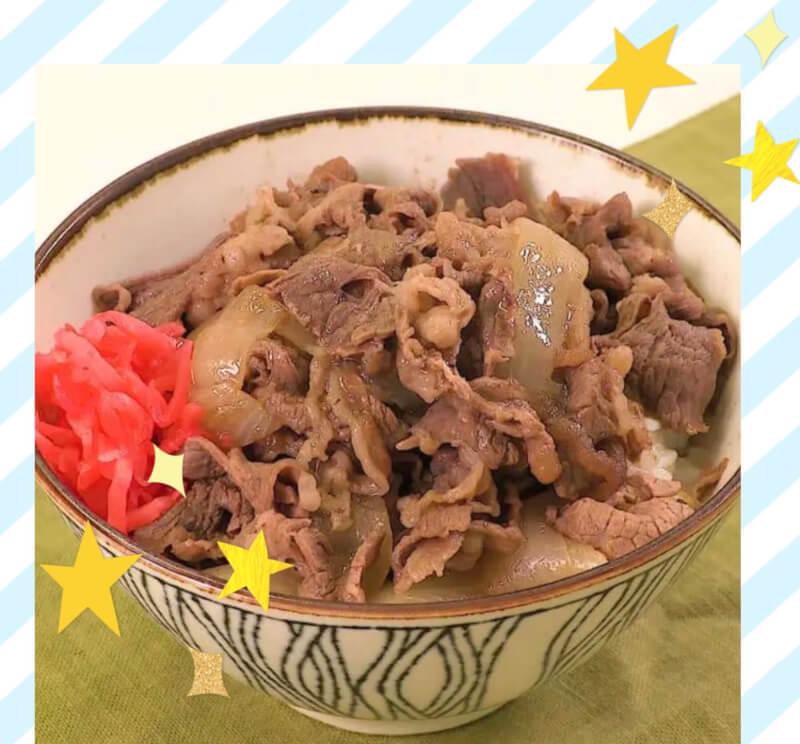 ★Japanese popular bowl 『Gyudon』★