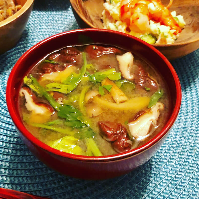 Japanese traditional home-made style Miso soup